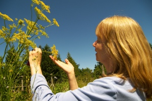 CAPTION : Jacqueline Freeman, biodynamic beekeeper, lets her garden go to seed for the bees.