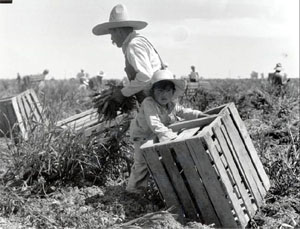 Mexican Farmworker With child circa 1960